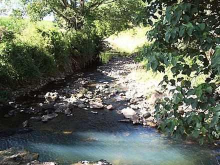 Unit - 1445B Owens Creek Lo...