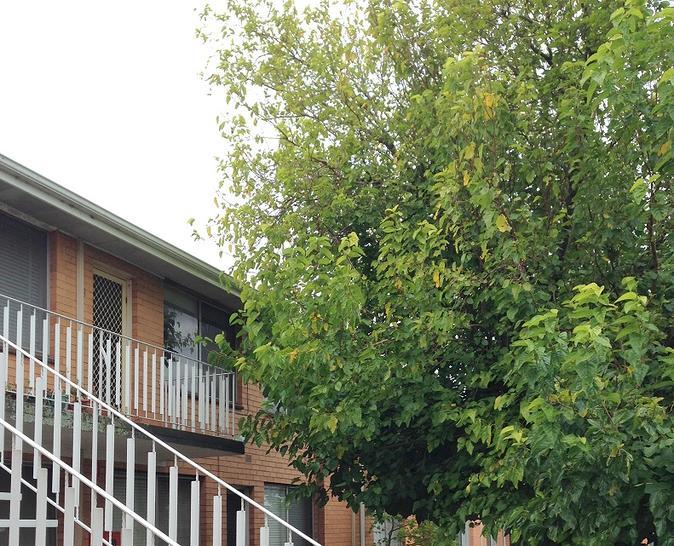 Apartment - 14/30  Nicholso...