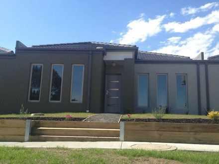 House - 11 Mcclenaghan Plac...